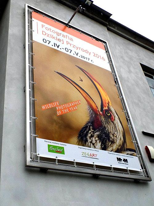 Baner reklamowy, czyli tania reklama wielkoformatowa